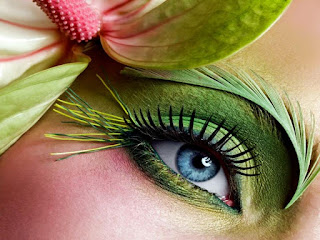 Eye Makeup Green And Blue Eyes