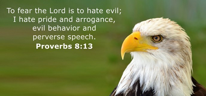 To fear the Lord is to hate evil; I hate pride and arrogance, evil behavior and perverse speech.