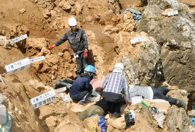 Japan's Ishigaki Island may harbour largest Palaeolithic site in East Asia