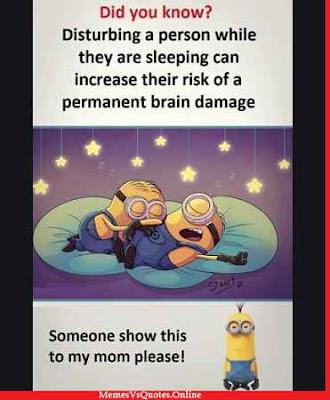 Minion Memes Ironic
