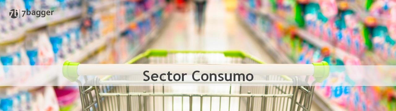 Sector Consumo