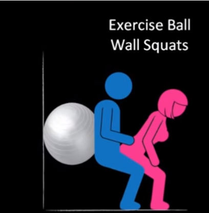 SEX exercises ball