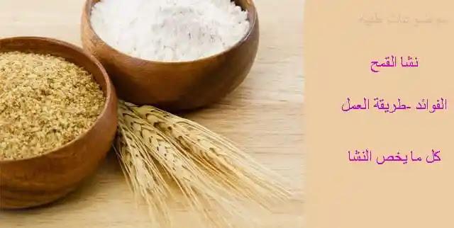 نشا القمح - فائدة نشا القمح - فوائد نشا القمح للبشرة - فوائد نشا القمح للشعر - تركيب نشا القمح - طريقة عمل نشا القمح