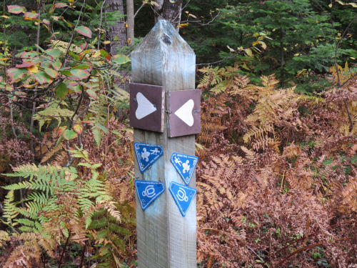 Midland to Mackinac trail markers