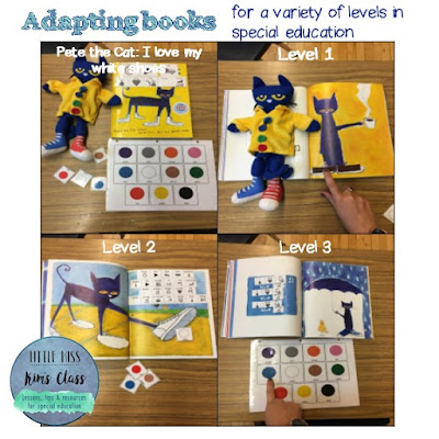 Adapting Books in Special Education
