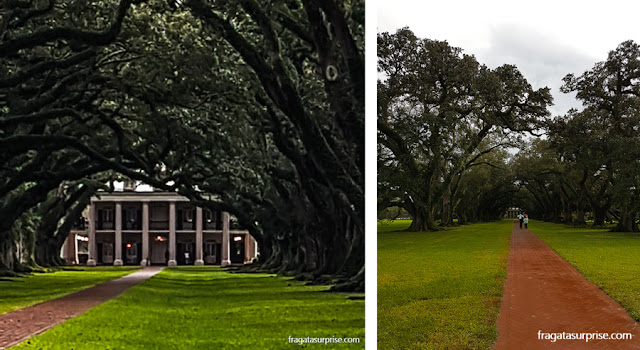 Oak Alley Plantation, na Luisiana