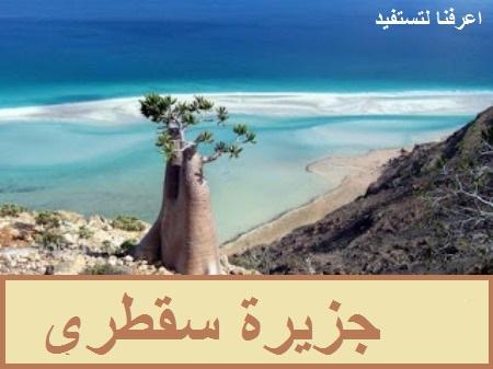 جزيرة سقطري