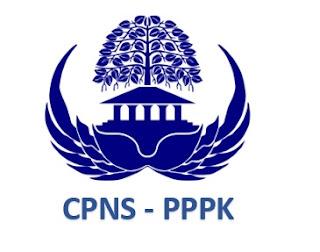 Jadwal CPNS PPPK 2019