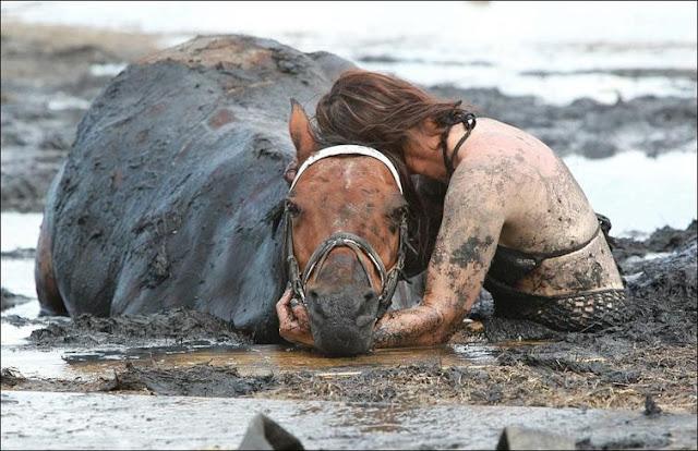 Лошадь попала в трясину и не могла выбраться. На протяжении трех часов ее хозяйка смотрела как лошадь постепенно теряет силы и ничего не могла сделать