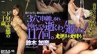 Tokyo Hot n0146