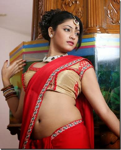 Dress Hot Saree Navel Hot S Miya Hot Naval S Wallpapers