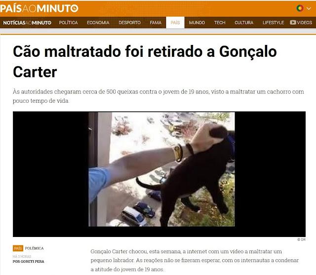https://www.noticiasaominuto.com/pais/583128/cao-maltratado-foi-retirado-a-goncalo-carter?&utm_medium=social&utm_source=facebook.com&utm_campaign=buffer&utm_content=geral