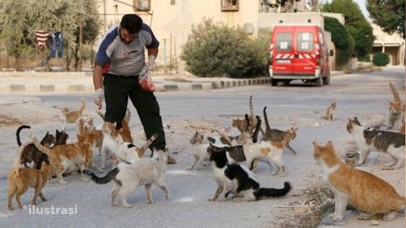 Berhati Mulia, Separuh Gaji Juru Parkir Ini Diberikan Untuk Kucing Liar