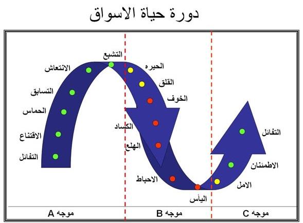 دورة حياة السوق