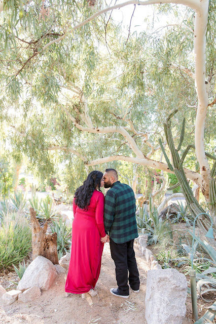 Boojum Tree Engagement Session by Micah Carling Photography