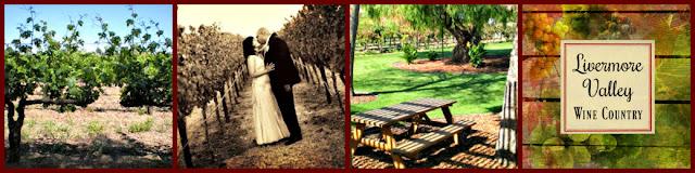 Tyler Vu Wedding Photography