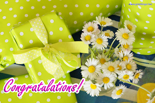 congratulations HD Images greetings  gift box beautiful flowers