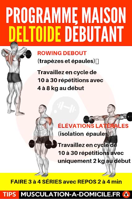 musculation à domicile programme musculation débutant poids du corps et haltère épaules deltoides bras