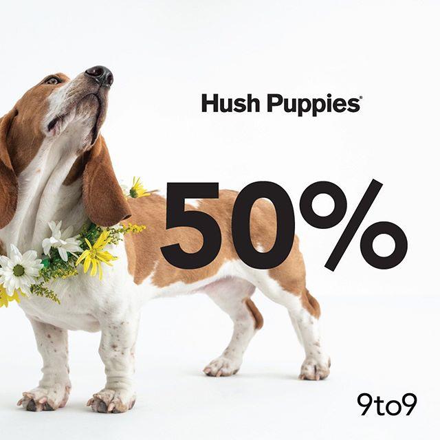 #9to9 - #Promo Sambut Ramadhan Diskon 50% Produk Hush Puppies