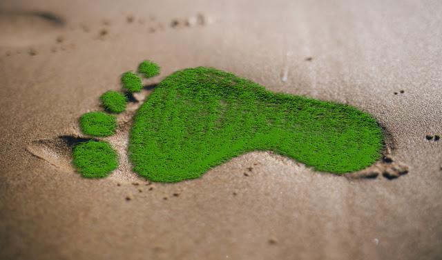 ¿Sabes qué es la huella ecológica?