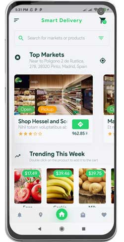 Grocery food pharmacy store delivery mobile app