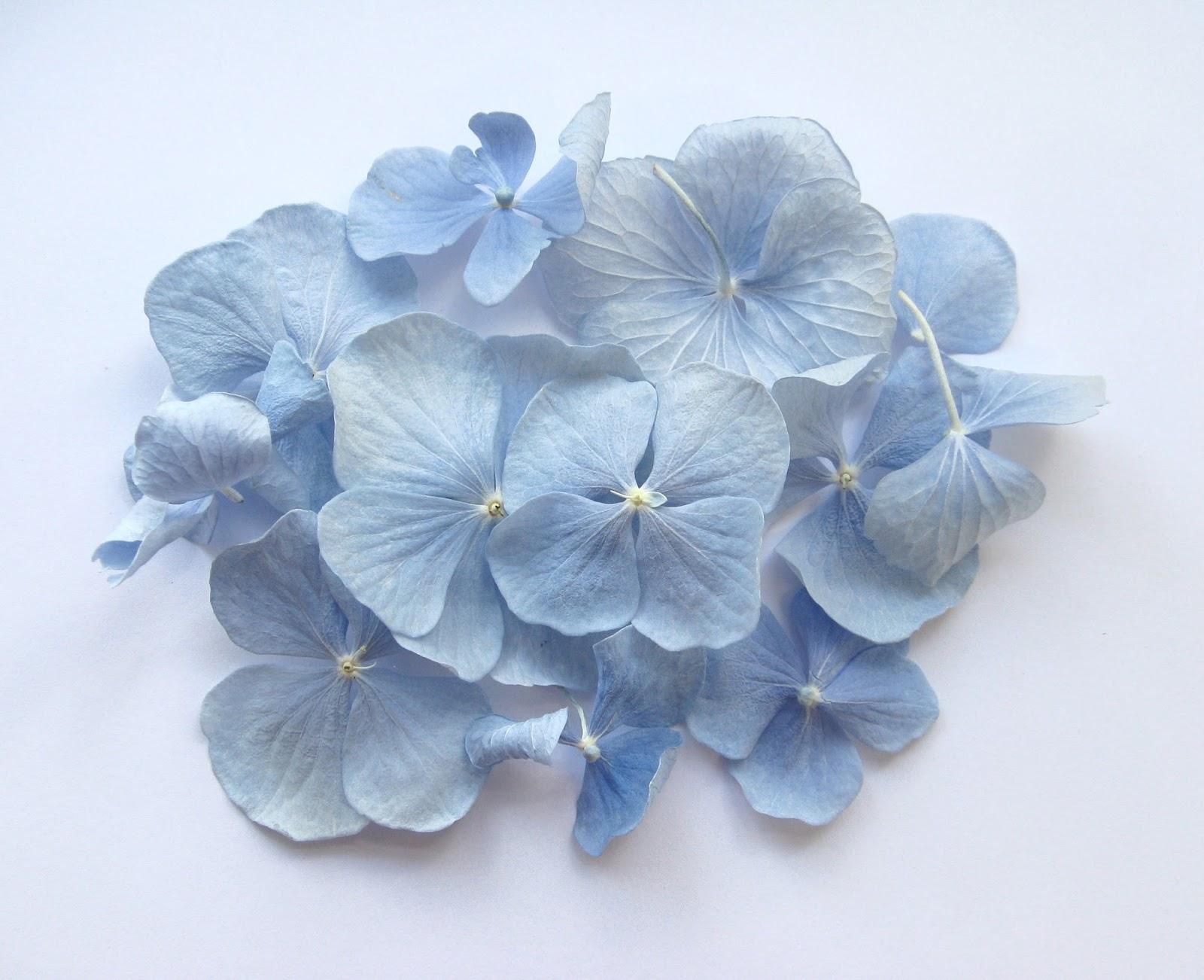 The Confetti Blog Wedding Traditions Something Blue Blue Confetti Petals
