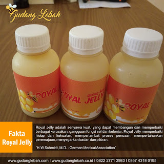 royal jelly pati, royal jelly Pati, jual royal jelly di pati, supplier royal jelly pati, toko royal jelly pati, royal jelly kesuburan pati, tempat jual royal jelly di pati, beli royal jelly di pati, distributor royal jelly pati, agen royal jelly di pati, pemasok royal jelly di pati, harga royal jelly dipati, tempat pesan royal jelly di pati