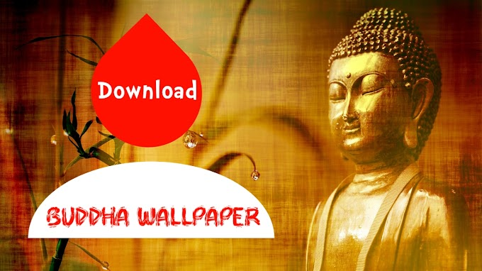 How To Download Best HD buddha wallpaper - APP