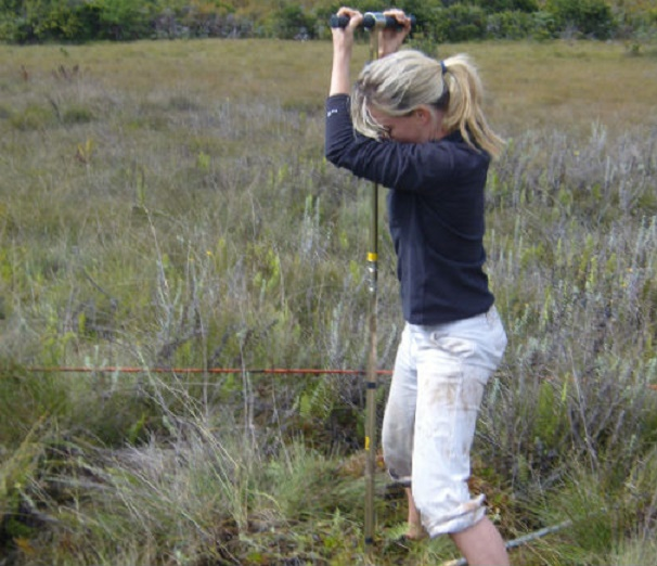 Peat bog reveals more than 1,000 years of Tanzanian history