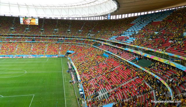 Estádio Mané Garrincha, Brasília