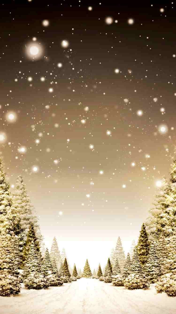 Merry Christmas Shining Trees HD Wallpaper for iPhone