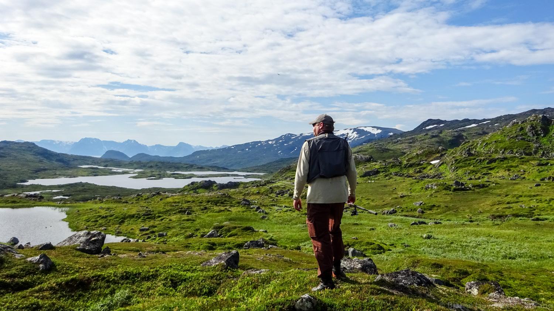 Sørøya 2019