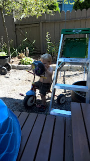 toddler outside on his bike with a new helmet