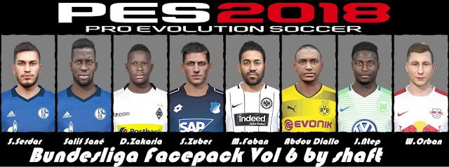 Bundesliga Facepack Vol 6 PES 2018