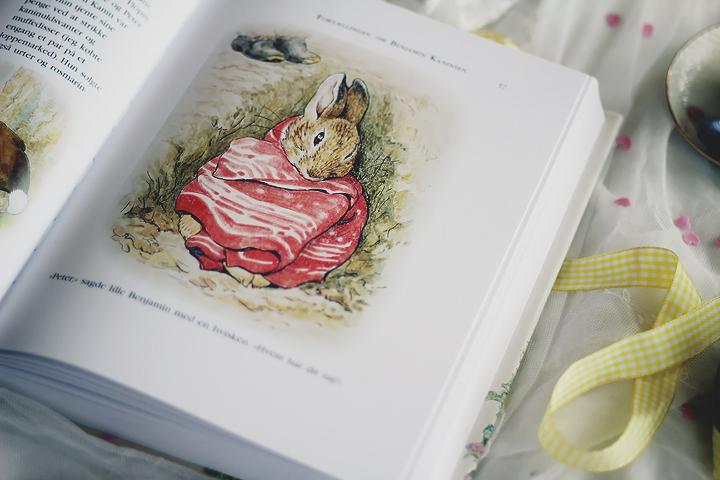 tegninger af dyr en kanin