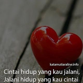 Cintai Hidup