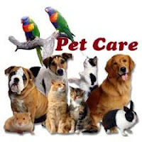Pet care can be expensive and requires planning!