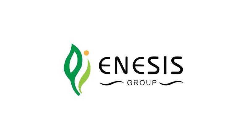 Lowongan Kerja PT Herlina Indah (Enesis Group)