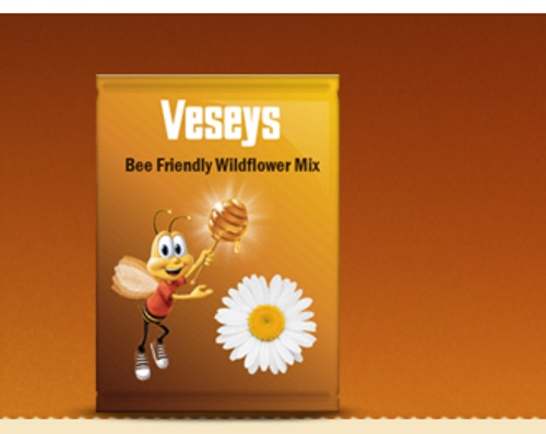 Bring Back the Bees Free Wildflower Seeds