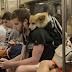 Μέσα σε μια τσάντα στο μετρό της Νέας Υόρκης...