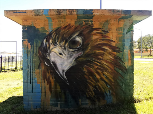 Canberra Street art | Icon Water mural by Graffik Paint in Conder