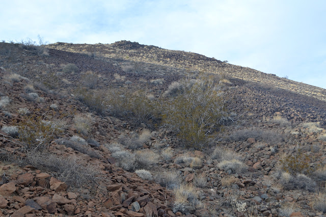 slope of Malapai Hill