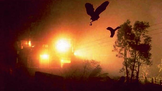 खूबसूरत वैली जिसमे पक्षी करते है आत्महत्या