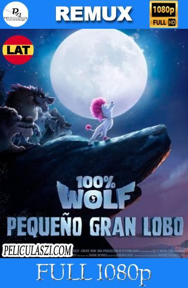 100 Porciento Lobo (2020) Full HD REMUX & BRRip 1080p Dual-Latino VIP
