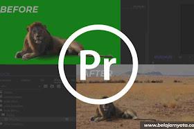 Cara Editing Video Green Screen di Adobe Premiere Pro