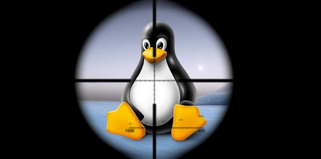 Descoberto novo Backdoor e DDoS Tróia, e o alvo são sistemas GNU/Linux!