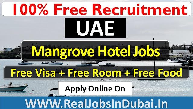 Mangrove Hotel Jobs In Ras Al Khaimah - UAE 2021