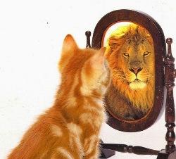 perbedaan percaya diri dan tidak tahu malu