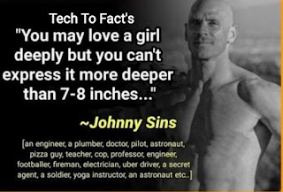 What is the monthly income of Johnny Sins?