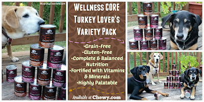3 happy dogs with wellness dog food